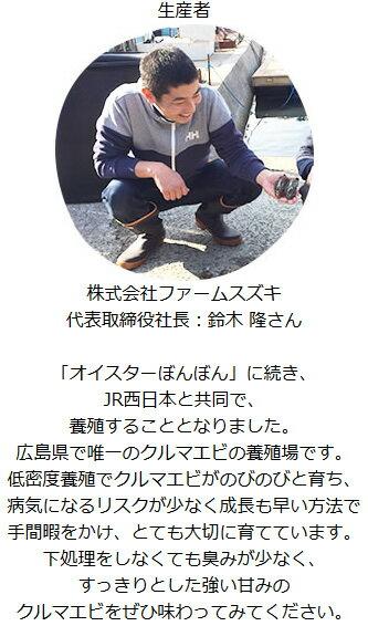 【プレミアムオーガニックフィッシュ】オイスターぼんぼん(養殖カキ)36個セット(ハーフシェル)[冷凍](広島県産)送料無料