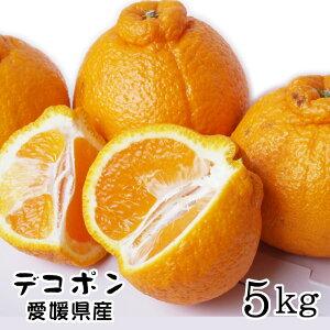 【訳ありデコポン】5kgセット送料無料!(大中小混合)〔自家用〕[常温]甘くて香り高い fs0501