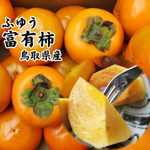 訳あり富有柿(ふゆうかき)5kgセット〔送料無料〕[鳥取県産][常温]11月下旬以降予約受付け順出荷