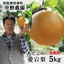 中野農園【あたご梨】5kgセット(自家用:5-12玉入り)【送料無料】[常温]鳥取県産[農家指定商品]【1月上旬以降出荷予定】