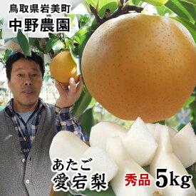 中野農園【あたご梨】5kgセット(秀品進物用:5-8玉入り)【送料無料】[常温]鳥取県産[農家指定商品]【3月上旬出荷】