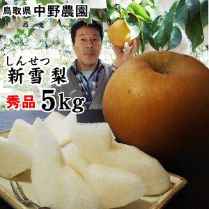 中野農園【新雪梨】5kgセット(秀品進物用:5-7玉入り)【送料無料】[常温]鳥取県産[農家指定商品]【予約受付け順出荷】