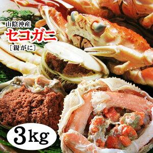 【訳あり】セコガニ(親がに・せいこ蟹)(ダルマ子無ヤケ混じり)どっさり3kgセット[生][冷凍]【送料無料】【カニ】かに【蟹】せこがに 勢子がに セイコガニ せいこがに【RCP】松葉 ガニ