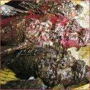 【スピード出荷】鳥取県産 オコゼ[背びれ取り除き済み][活締め!] 1匹(210g前後)【お刺身・唐揚げ♪】