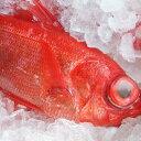 【持ち越し品】【スピード出荷】金目鯛(キンメダイ)[生] 1匹(800g前後)煮つけに♪【高知県産】