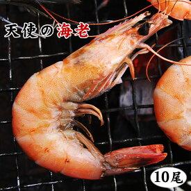 BBQ【バーベキューに 天使の海老 10尾 セット】[冷凍]【網焼きで殻も食べられる!】パラダイスプローン・てんしのえび
