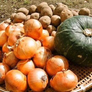 北海道の有機玉ねぎ・じゃがいも・南瓜セット約7kg 玉ねぎ ジャガイモ 南瓜 箱根牧場 ハンバーグ 皮 スープ