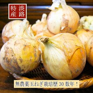 玉ねぎ 淡路島 淡路の無農薬玉ねぎ10kg プロも認める高品 国産 産地直送 甘くてシャキシャキ 柔らかい 辛味が少ない