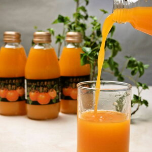 送料無料 有田みかん100%のストレートジュース 200ml×10本搾りたて エコファーマー 無添加 みかんジュース 100%ジュース 糖度13度以上!フルーツジュース 果物ジュース 柑橘 お取り寄せ 和歌