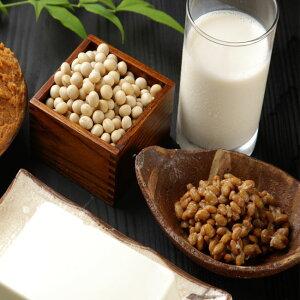 送料無料 国産減農薬大豆 豆乳パウダー 豆乳の素 300g×3袋 食べるイソフラボン 非遺伝子組換え大豆 豆乳 パウダー 粉 粉末