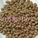 むかご 自然薯のムカゴ 500g 令和2年新物!!