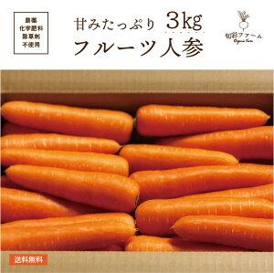 フルーツ にんじん 3kg 化学肥料・農薬不使用 無農薬 農家直送 送料無料 とれたて 新鮮 有機野菜 旬の野菜 産直 福島県