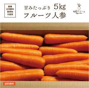 フルーツ にんじん 5kg 化学肥料・農薬不使用 無農薬 農家直送 送料無料 とれたて 新鮮 有機野菜 旬の野菜 産直 福島県