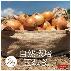 やわらか玉ねぎ 2kg 化学肥料・農薬不使用 農家直送 自然栽培 有機栽培 送料無料 旬の野菜 産直 福島県