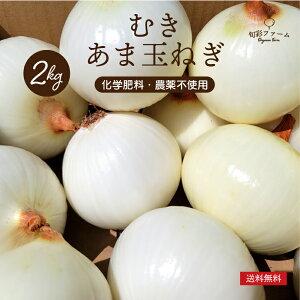 やわらか あま玉ねぎ むき玉ねぎ 2kg お得 化学肥料・農薬不使用 農家直送 自然栽培 有機栽培 送料無料 旬の野菜 産直 福島県
