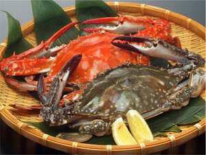 【送料無料】愛知 伊勢湾産 活〆 渡り蟹 ワタリガニ ガザミ (中 小) オス メス 1kg 5匹〜8匹 爪折れあり