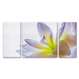 絵画 インテリア USART ファブリックパネル LILY W100cm H50cm D2cm SIZE/L 3枚セット 横長 絵 新築 壁絵 飾り 装飾 壁 軽量 軽い