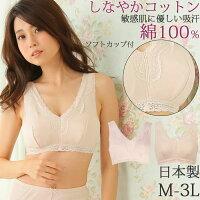 オーガニックコットン100%Vネックレースラン型ソフトブラインナー日本製綿100%M/L/LL/3L大きいサイズ女性下着肌着レディースインナー母の日敬老の日ギフト贈り物