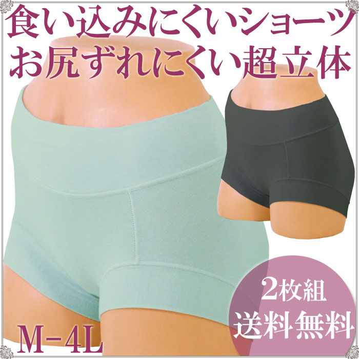 食い込まない ずり上がらない 超立体ショーツ 一分丈 綿 2枚セット 送料無料[M:1/2]M L LL 3L 4L 大きいサイズ コットン パンツ レディースインナー 女性下着