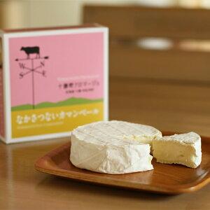 なかさつない カマンベールチーズ 120g