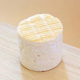 生クリーム入り 白カビチーズ ベルネージュ 70g