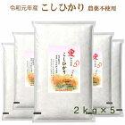 無農薬こしひかり無洗米特別栽培米愛知県産離乳食防災食の画像