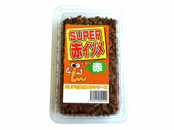 活エサ SUPER赤イソメ(養殖)500円パック ※ノークレーム限定