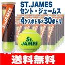 硬式テニスボール【送料無料】[新パッケージ]ダンロップ セントジェームス St.JAMES/4球×30缶/120球(DUNLOP 練習 硬式テニスボール ダンロップ ボール サークル まとめ買い テニ