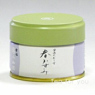 绿色茶和弹簧或圆角 (角多) 20 克罐装在 3 月初至 4 月下旬