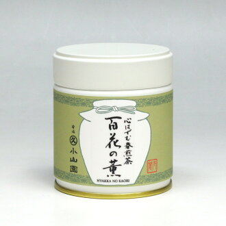 MARUKYU KOYAMAEN Joyful spring Sencha / 百花の薫 (Hyakkano kaori) 40 g in a can