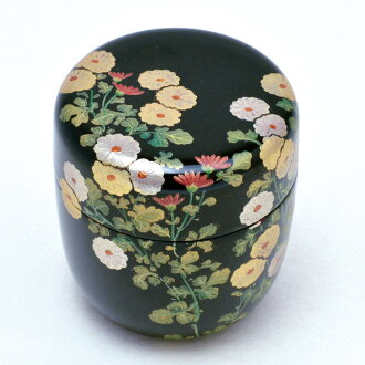 Middle jujube chrysanthemum lacquer work Rei Sasaki peak product
