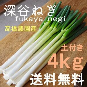 深谷ねぎ4kg♪産地直送!新鮮野菜【ねぎ】