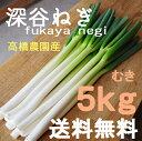 深谷ねぎ5kg♪産地直送!新鮮野菜【ねぎ】【業務用】B・BS規格