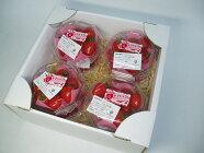 トマトベリー(世界が認めたミニトマト)8P