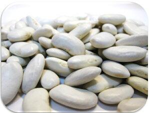 【送料無料】豆力 北海道産 大福豆 10kg 【国内産 業務用 白インゲン】