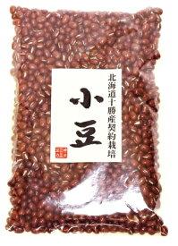 豆力 契約栽培 北海道 十勝産 小豆 (あずき) 250g