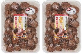 乾物屋の底力 大分県産 乾椎茸 200g (どんこ 原木栽培 乾燥しいたけ 乾物)