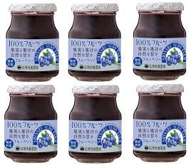 【宅配便送料無料】 信州須藤農園 砂糖不使用 100%フルーツ ブルーベリージャム 185g×6個   【スドージャム 製菓材料】
