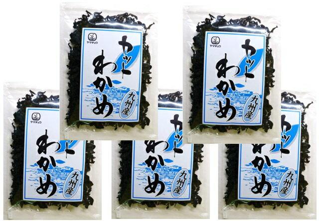 九州ひじき屋の 九州産 カットわかめ 20g×5袋 【ヤマチュウ 山忠 国産】