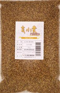 豆力 北海道産 雑穀 玄小麦(きたほなみ) 1kg