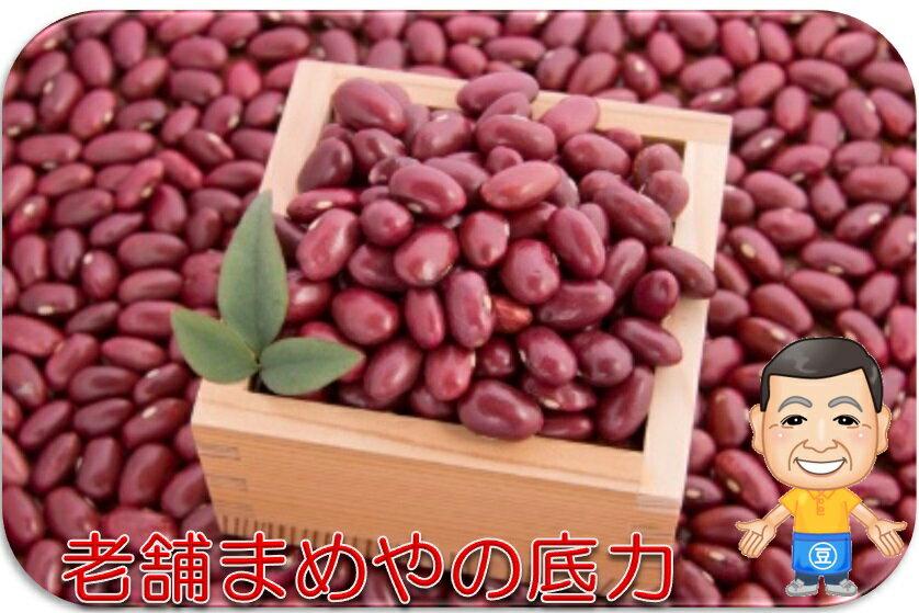 まめやの底力 北海道産 大正金時 1kg  【限定品 金時豆 きんときまめ 大特価 豆類】