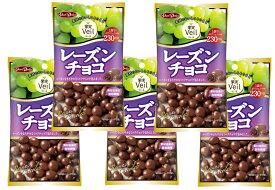 グルメな栄養士セレクト洋菓子 レーズンチョコ 47g×5袋  【正栄デリシィ チョコレート ぶどうチョコ】