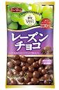 【宅配便送料無料】 グルメな栄養士セレクト洋菓子 レーズンチョコ 47g×12袋  【正栄デリシィ チョコレート ぶ…