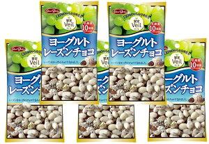 グルメな栄養士セレクト洋菓子 ヨーグルトレーズンチョコ 40g×5袋  【正栄デリシィ チョコレート ぶどうチョコ】