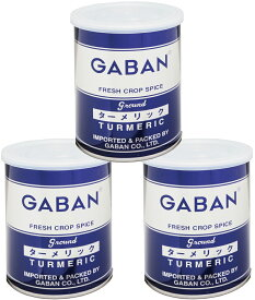 GABAN ターメリックパウダー(缶) 220g×3個   【スパイス ハウス食品 香辛料 粉 業務用 Turmeric うこん】