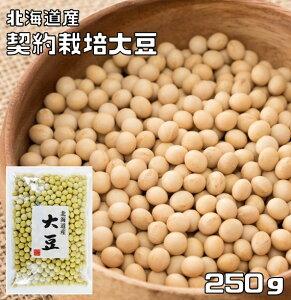 大豆 豆力 契約栽培北海道産 250g 【とよまさり大豆】