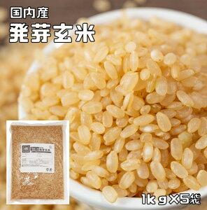 発芽玄米 5kg 豆力 こだわりの北海道産 玄米 玄氣 発芽米 【無洗米タイプ】