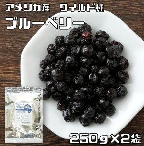 【メール便送料無料】 世界美食探究 アメリカ産 ドライフルーツ ブルーベリー(ワイルド種) 250g×2袋