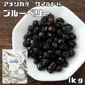 世界美食探究 アメリカ産 ドライフルーツ ブルーベリー(ワイルド種) 1kg