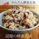 【かんたん酵素玄米4合×5個】玄米・国産小豆・塩が4合分になった便利な酵素玄米キット【送料無料】